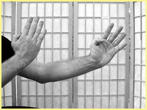 Wing Chun Hand Postions