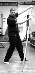 The Wing Chun Dragon Pole