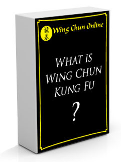 Wing Chun Resources